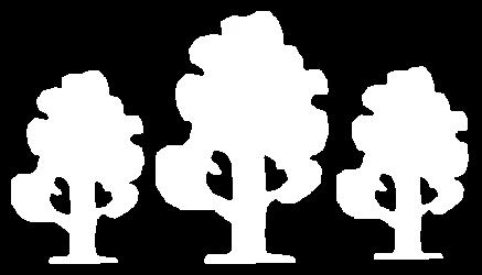 Drei Linden